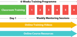 wordpress-mentored-training-programme
