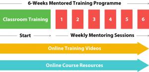 6-weeks-wordpress-mentored-training-programme